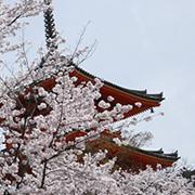 初めてのグループディスカッション体験!「【21卒向け】就活スタートアップセミナー in京都」2019年3月20日開催|イベントレポート